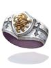 精鋭守護騎士の指輪 [1]