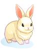 [衣装] 白ウサギ